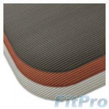 Koвpик гимнacтичecкий AIREX CORONELLA200 в магазине FitPro