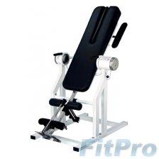 Инверсионный стол профессиональный с мотором, DFM (220V) Inversion table в магазине FitPro